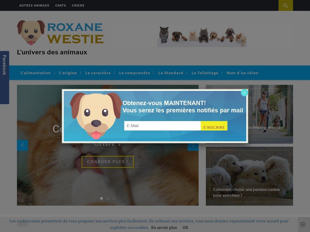 roxane-westie.fr