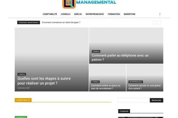 le-managemental.fr